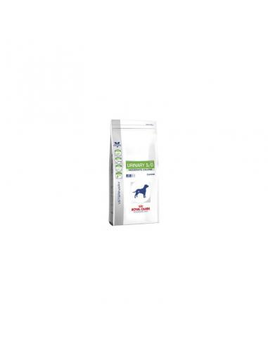 Royal Canin RC Diet Can Urinary Mod. Cal. UCM20 - Imagen 1