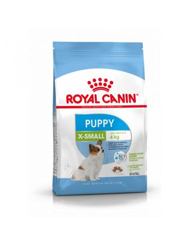 Royal Canin X-Small Puppy - Imagen 1